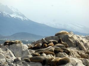 1194. Ushuaia. Navegación por el canal de Beagle