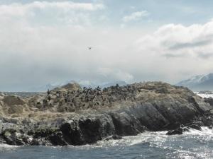 1197. Ushuaia. Navegación por el canal de Beagle