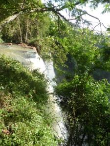 1229. Iguazú
