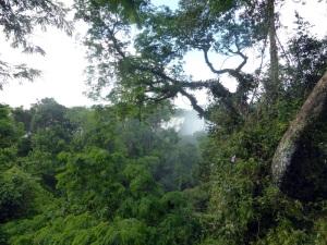 1234. Iguazú