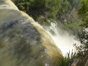1276. Iguazú