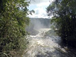 1277. Iguazú