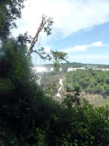 1456. Iguazú. Brasil