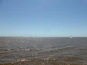 149. Navegación por el Río de la Plata y afluentes hasta Tigre