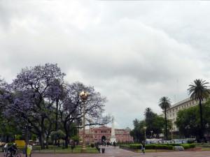 366. Buenos Aires. Plaza de Mayo (2)