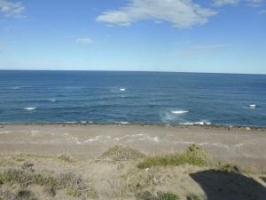 621. Por Península Valdés. Elefantes marinos