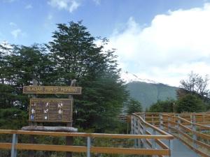 793. El Perito Moreno