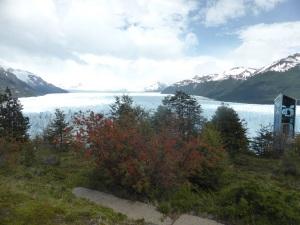 794. El Perito Moreno. Notro