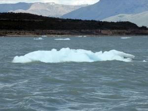 889. El Perito Moreno