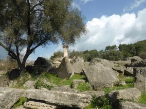 242. Olimpia. Templo de Zeus