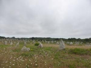 271. Carnac. Alineamientos de Le Ménec