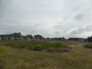 312. Carnac. Alineamientos de Kermario