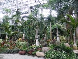1230. Shangai. Jardín botánico