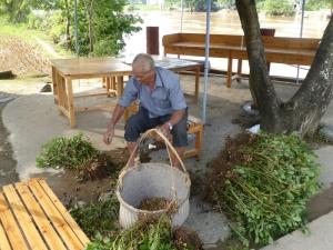 844. Yangshuo. Por los arrozales