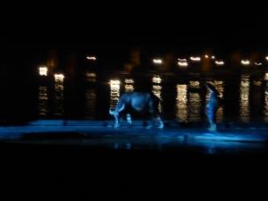 869. Yangshuo. Espectáculo de luz y sonido en el río
