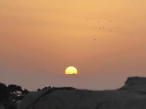 701. Yazd. Barrio antiguo desde una terraza. Puesta de sol