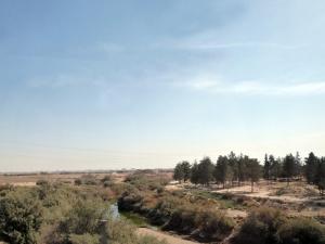 907. Hacia Persépolis