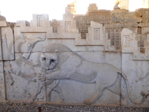 950. Persépolis. Relieves de la Apadana