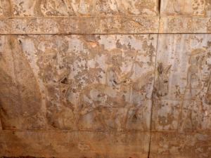 960. Persépolis. Relieves de la Apadana