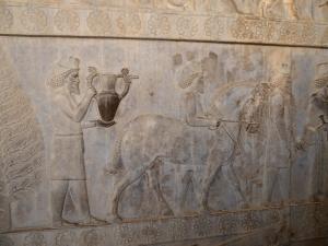 973. Persépolis. Relieves de la Apadana