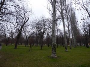 063. Pamplona. Parque Yamaguchi