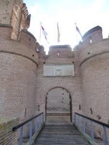 117. Medina del Campo. Castillo de la Mota
