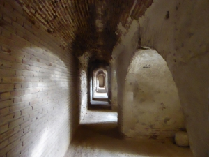 131. Medina del Campo. Castillo de la Mota