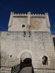 247. Peñafiel. Castillo