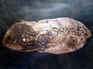 1056. Excavaciones cueva Areni-1. Los zapatos más antiguos del mundo. 388 a. C.