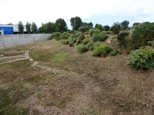 403-arles-restos-del-circo-romano
