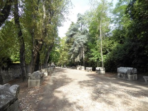 439-arles-les-alyscamps