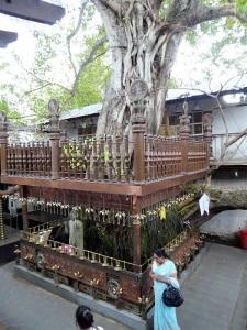 101-colombo-templo-budista-gangaramaya