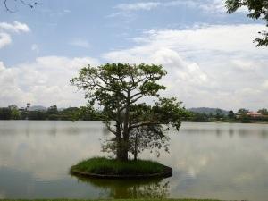 132-de-colombo-hacia-el-triangulo-cultural-kurunelaga