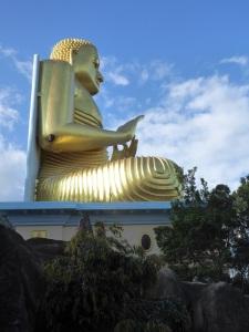 216-dambulla-buda-del-templo-de-oro-con-avispero