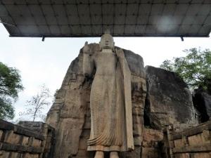 270-aukana-estatua-de-buda