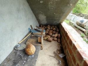 275-aukana-cortacocos
