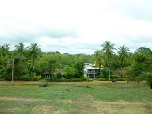 278-de-aukana-a-anuradhapura