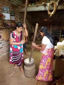 669-de-habarana-a-matale-preparacion-del-arroz
