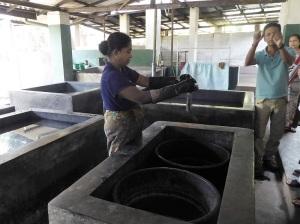 722-matale-fabrica-de-batik