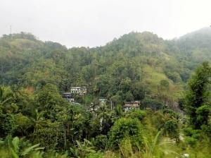 889-ferrocarril-de-kandy-a-rambukkana