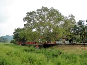 901-ferrocarril-de-kandy-a-rambukkana