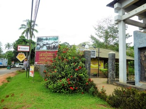 909-pinnewale-orfanato-de-elefantes