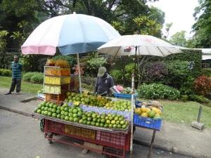 1120-peradeniya-puesto-de-frutas