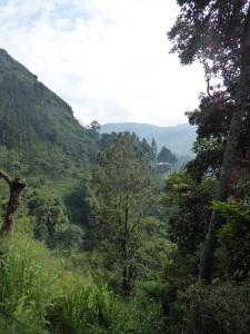 1154-de-kandy-a-nuwara-eliya