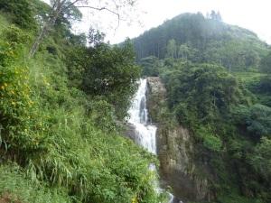 1173-de-kandy-a-nuwara-eliya-cascada-cercana-al-restaurante