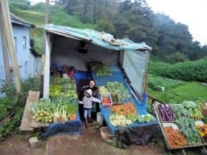 1193-hacia-nuwara-eliya-verduras-y-hortalizas-de-origen-europeo