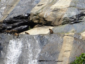 1237-cascadas-de-rawana-ella
