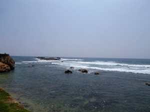 1553-galle