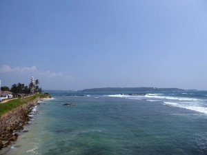 1554-galle