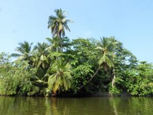 1594-paseo-por-rio-y-laguna-madu